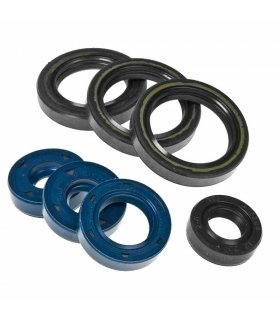 ENGINE OIL SEAL KIT ROTAX 122 APRILIA RS125