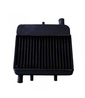 RADIATOR WATER COOLER DERBI GPR 75