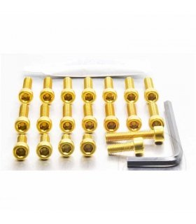 ALUMINIUM APRILIA RS125 ENGINE KIT PRO-BOLT GOLD