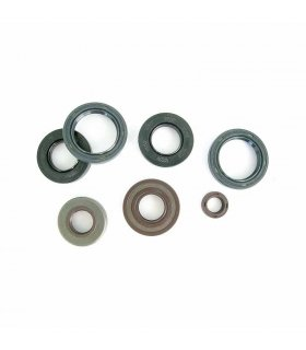 ENGINE OIL SEAL KIT MINARELLI AM 3/4/5/6 92-11 ATHENA