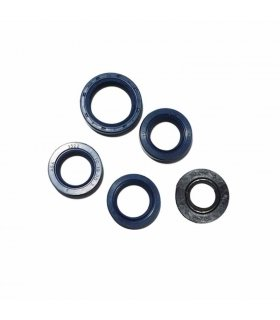 ENGINE OIL SEAL KIT VESPINO F9 , F18