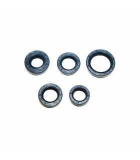 ENGINE OIL SEAL KIT VESPINO ALX, AL, NL, NLX, NXE, DELTA