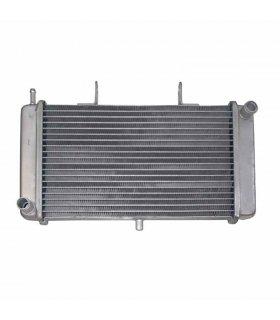 RADIATOR WATER COOLER DERBI GPR 125 2T (05-16)