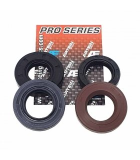 KIT RETENES MOTOR DERBI VARIANT START 5 ARTEIN PRO
