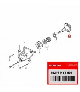 Eje bomba agua Honda NSR 125, CRM 125 19216-KY4-901