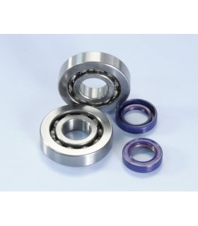 Polini main bearings and seals PIAGGIO ZIP