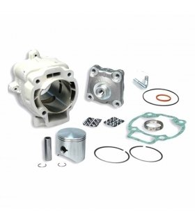 CYLINDER MALOSSI WITH HEAD 172cc PIAGGIO HEXAGON / GILERA RUNNER 125/180cc 2T