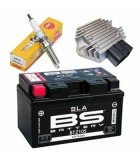 PARTES ELECTRICAS ZIP SP2 50CC LC (AGUA)