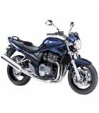 GSF 650 05-06